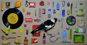 'It's all about the thrill of the hunt' Magpie Collection  40 x 76 cm oil on linen