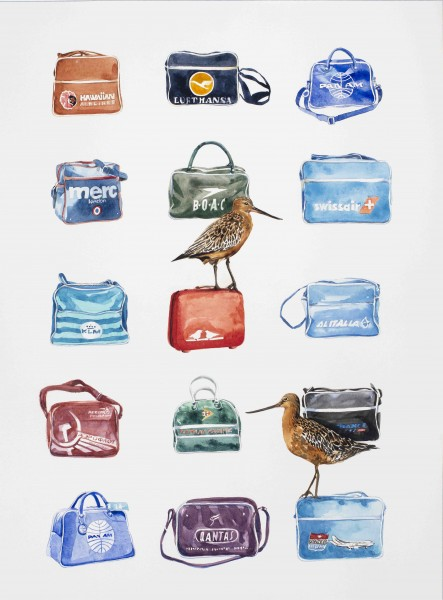 'We travel a lot so collecting these made sense' Bartailed Godwit Vintage Airline bags 46 x 61 cm watercolour